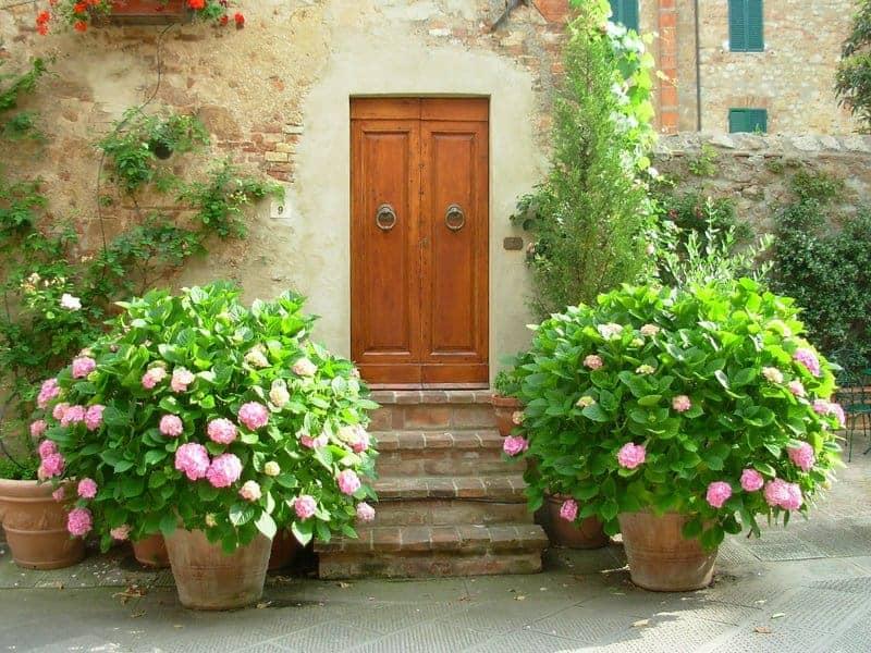 Magical Door for Success