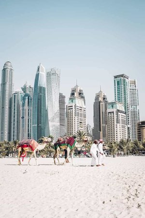 Marina Dubai Beach in Dubai, The Emirates