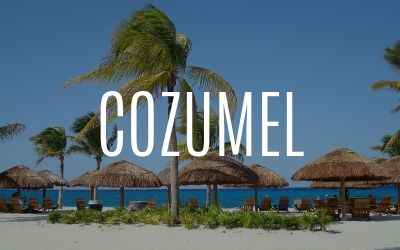 Port of Cozumel Webcam