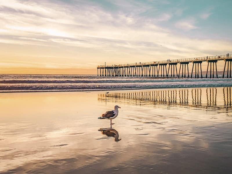 Southampton Beach at Sunset