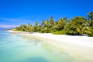A White Sandy Beach in Cozumel, Mexico